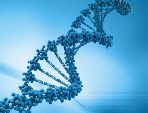 Ein genetischer Defekt der möglicherweise die Hälfte der Bevölkerung betrifft
