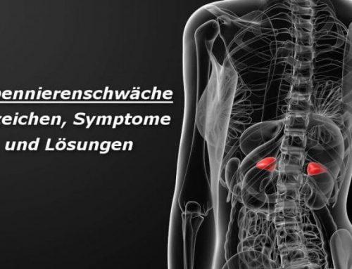 Welche Symptome deuten auf eine Nebennierenschwäche hin ?
