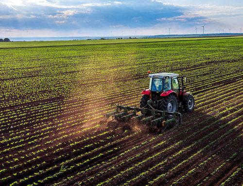 Der Boden-Burnout: Nur noch 60 Ernten weltweit – dann ist Schluss