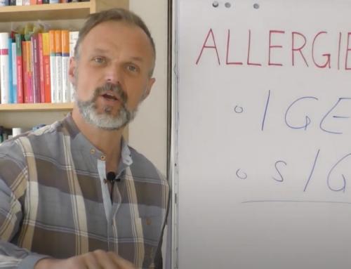 Allergien, Histamin und der Ursprung im Darm Markus Stark erklärt